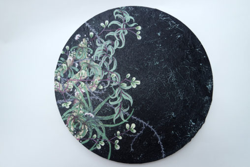 Plants and brambles painting by Jessica Holmes